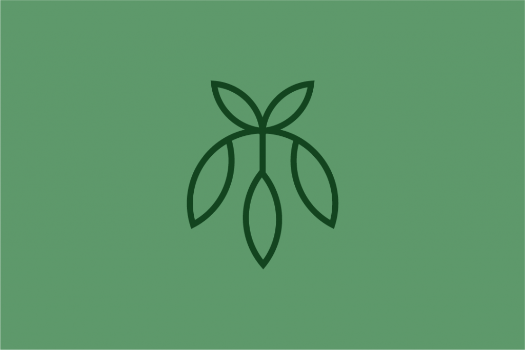 Unused Leaf Logo
